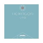 Apavisa Hexagon plytelių katalogas